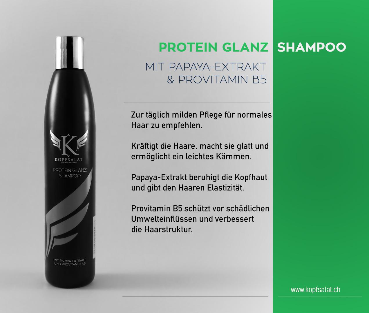 1 protein glanz shampoo