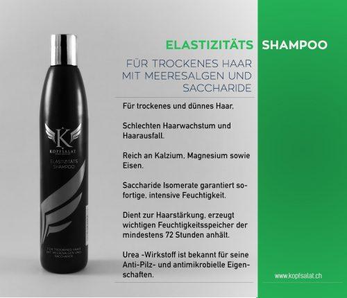 1 elastizitaets shampoo